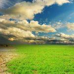 La COP25 debe alcanzar compromisos ambiciosos, reales y tangibles